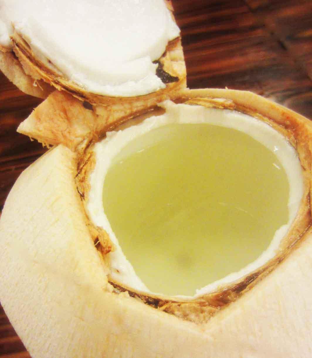 coconut 2a....jpg