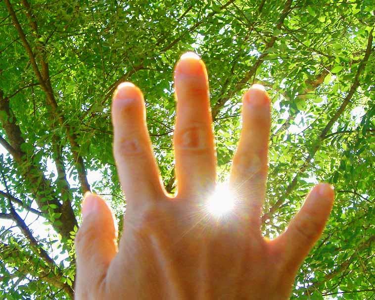 healing hand 1a....jpg